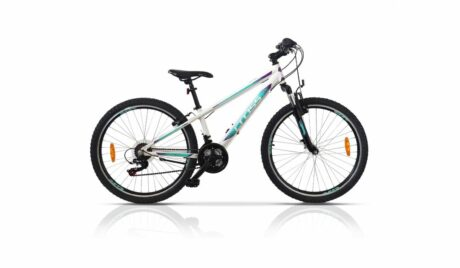 54899_58346_bicicleta_Cross_Daisy_26
